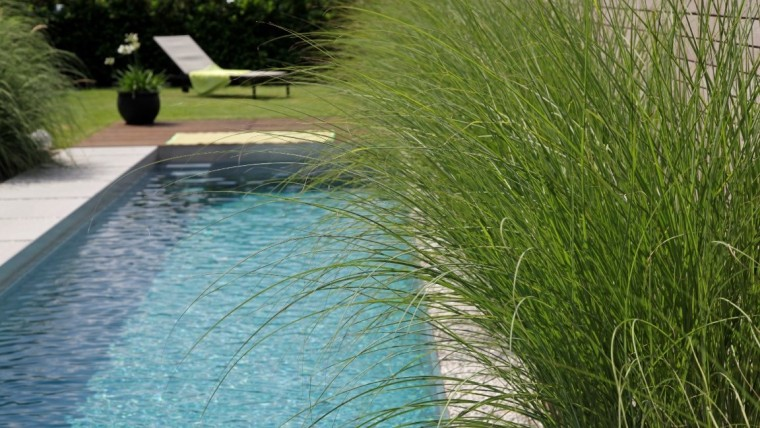 Living-Pool