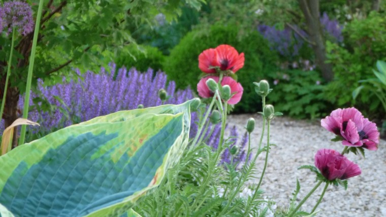 Gartenwerkstatt & Service